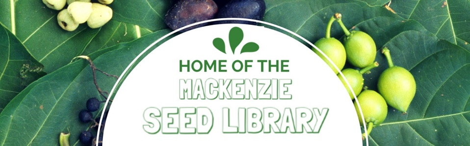 Seed Library Slide